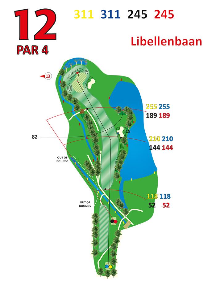 Layout libellenbaan hole 12