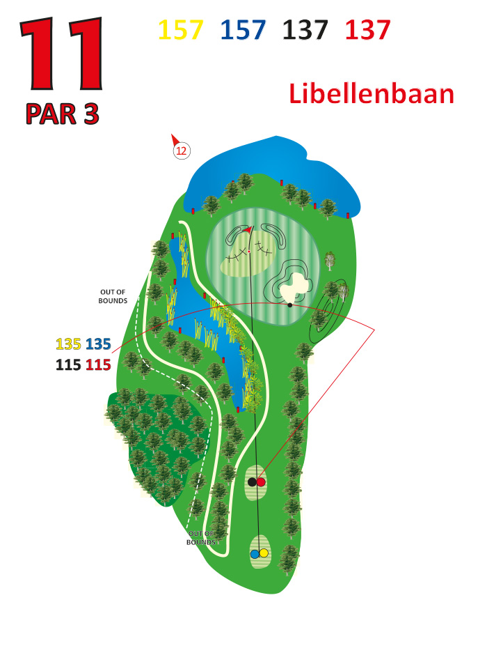 Layout libellenbaan hole 11