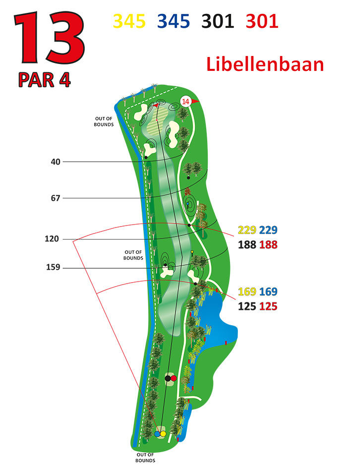 Layout libellenbaan hole 13