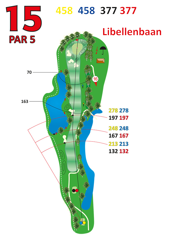 Layout libellenbaan hole 15