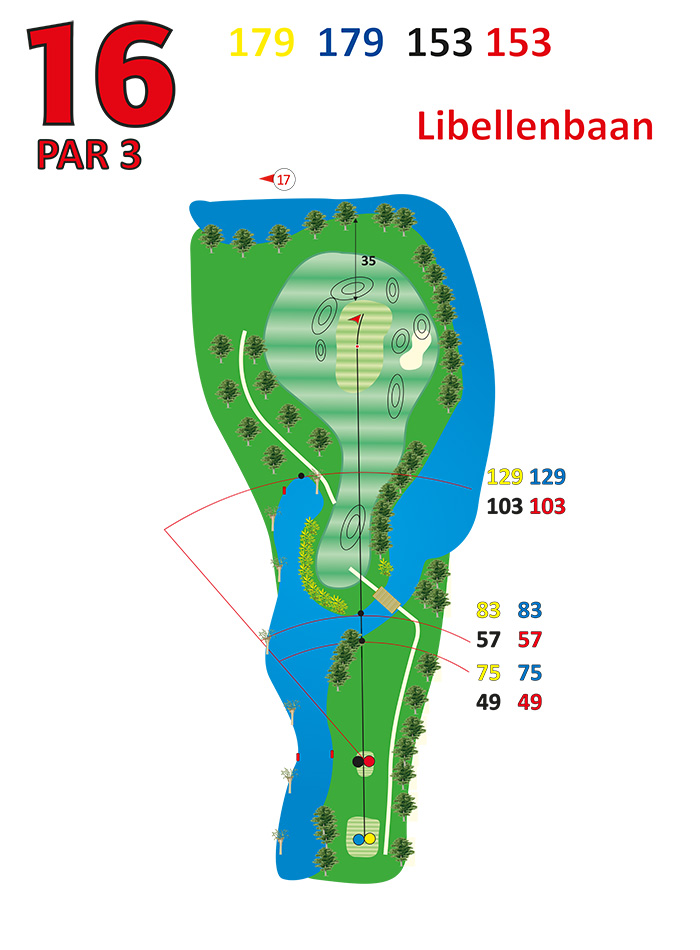 Layout libellenbaan hole 16